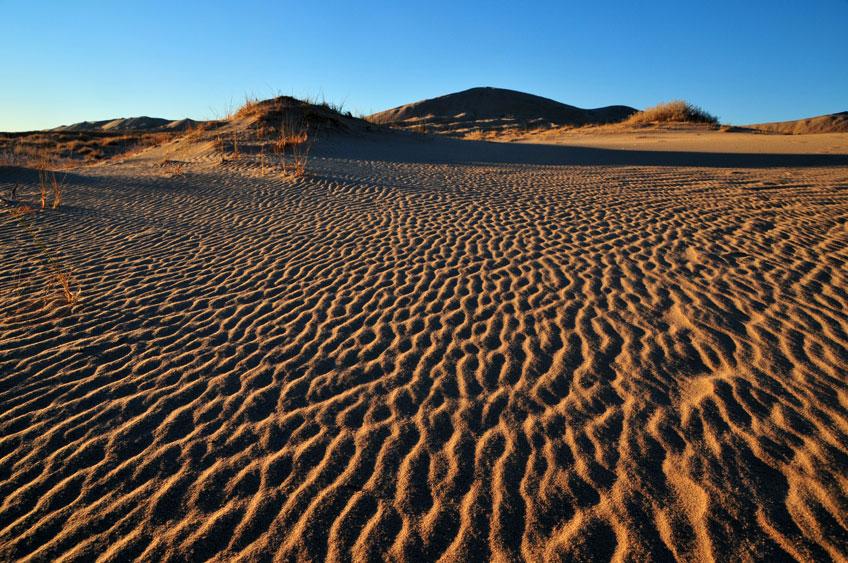 kelso-dunes