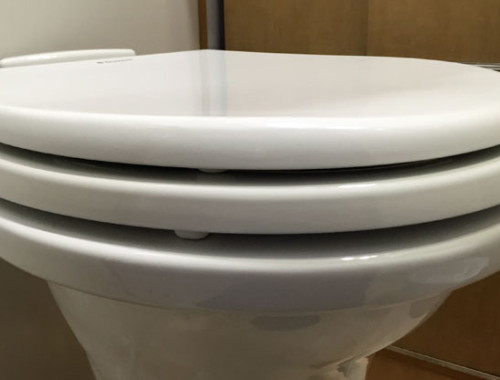 toilet-seat-upgrade