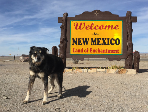 welcome-to-new-mexico