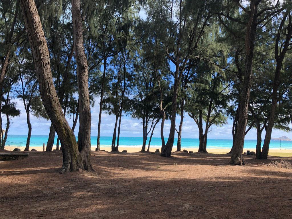 ohau beach camping
