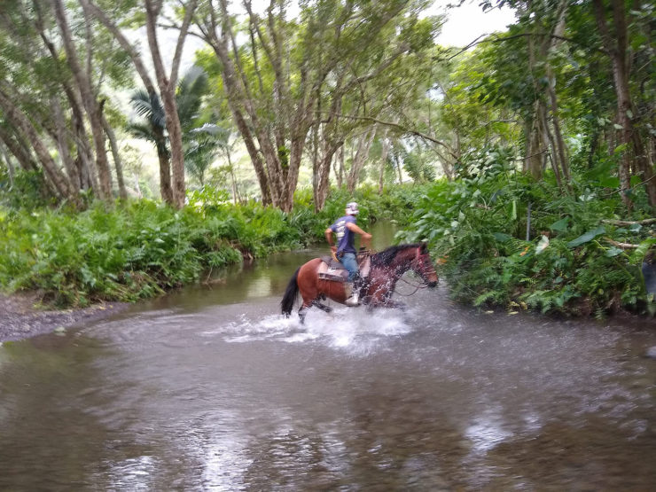 water crossing on a horse